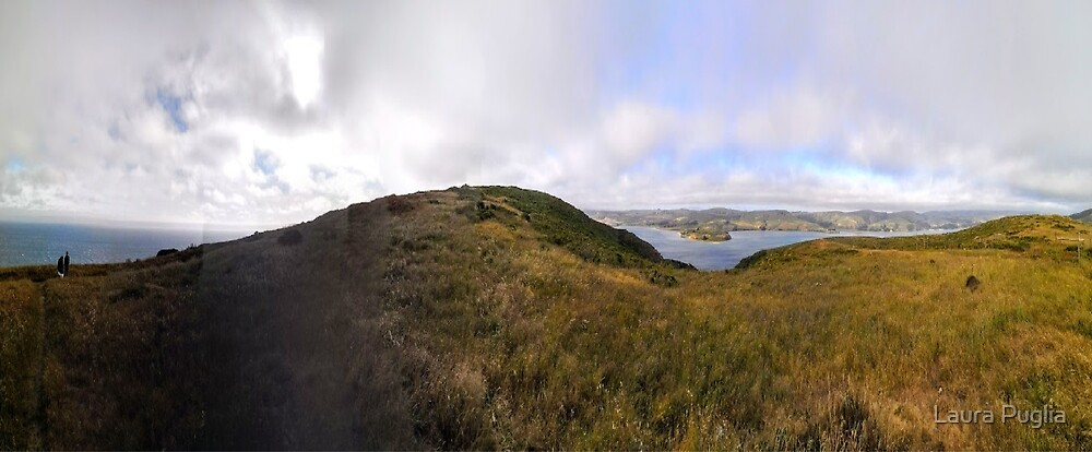 Pano Point Reyes AB by Laura Puglia