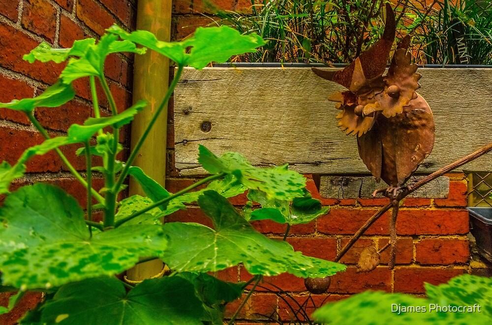 rusty bird watch  by Djames Photocraft