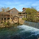 The Old Mill by Lanis Rossi