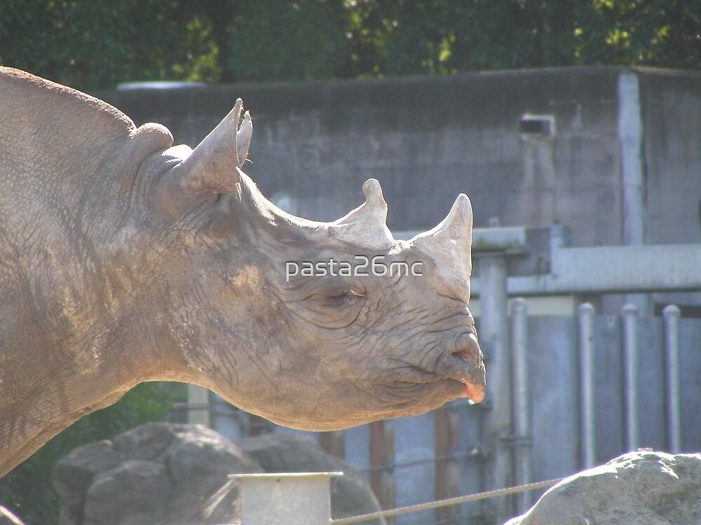 Rhino 001 by pasta26mc