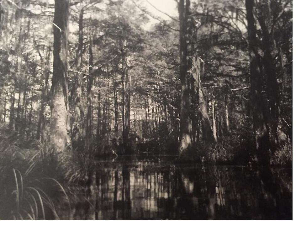 Haunted Bayou of the past  by Vintagesnap120