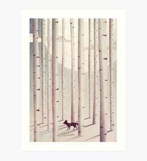 Serene Forest Art Print