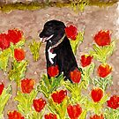 Black Dog in Red Tulips by danvera