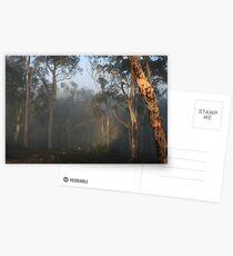 Avon Valley Postcards