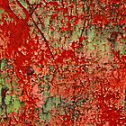 Abstract Red Rust on Green Paint by Anna Lemos