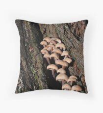 Fungi on Stringy Bark Throw Pillow