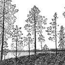 Morning in Finland by Aleksandra Kabakova