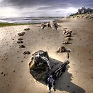 The Hammer Shipwreck Cape Cod HDR by Artist Dapixara