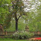 Lovely Day--Central Park by Cheri Sundra