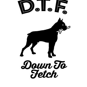 DTF Down to Fetch Funny Boxer Edition by sphericalearth