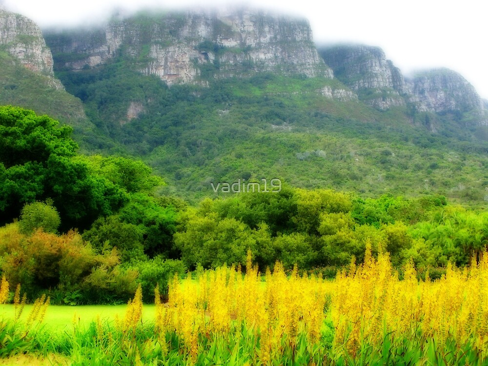 Kirstenbosch National Botanical Garden, Cape Town, South Africa by vadim19