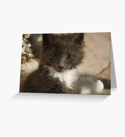 Wild Hair! Greeting Card