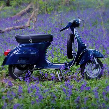 Vespa Primavera Bluebells by redstar5