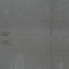 Foggy Marsh by Dave & Trena Puckett