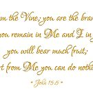 I Am the Vine you are the branches Bible quote John 15: 5 by Artist4God
