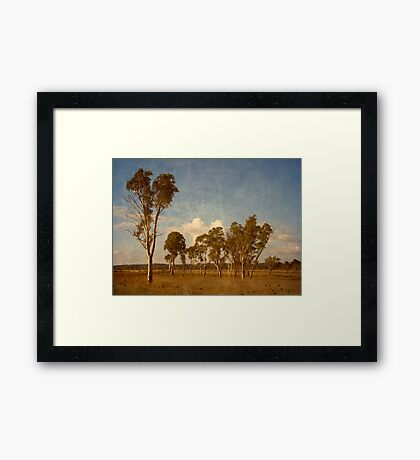 Thunderbolt Country - Uralla, Northern Tablelands, NSW, Australia Framed Print