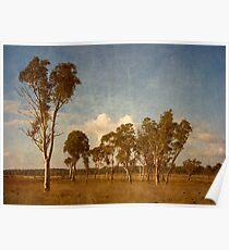 Thunderbolt Country - Uralla, Northern Tablelands, NSW, Australia Poster