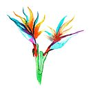 Watercolor bird of paradise tropical flower by thealohastudios