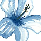 Watercolor blue hibiscus by thealohastudios