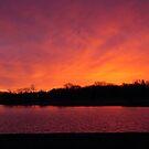 Sunrise at the Lake by Brian Dodd