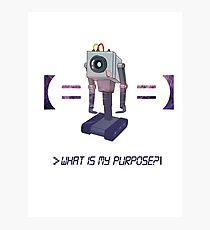 Sad Machine What is my Purpose Photographic Print