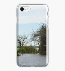 In the Everglades iPhone Case/Skin