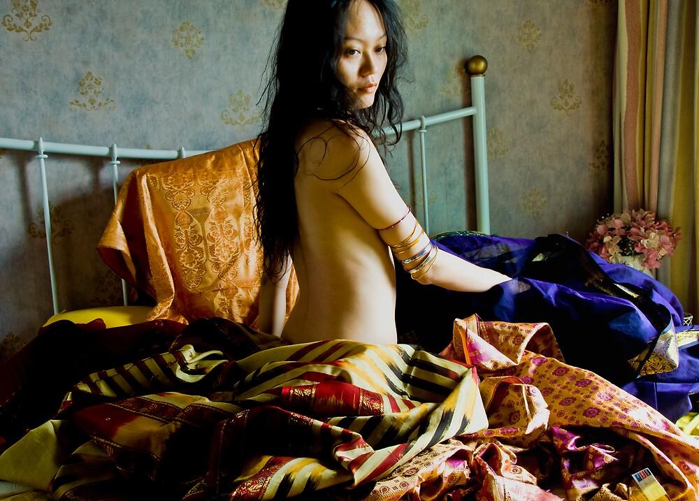 Indian Fabrics III by bginch88