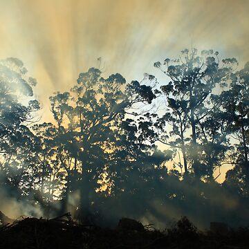 Montagu Bushfire , nor west coast Tasmania , Australia by phillip24
