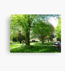 Under Cover of Shade Canvas Print