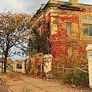 Abandoned Planters Peanuts Building by Cheri Sundra