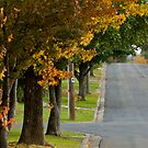 Autumn Street by dazzleng
