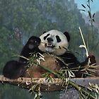 Young Panda Relaxing by AnnDixon