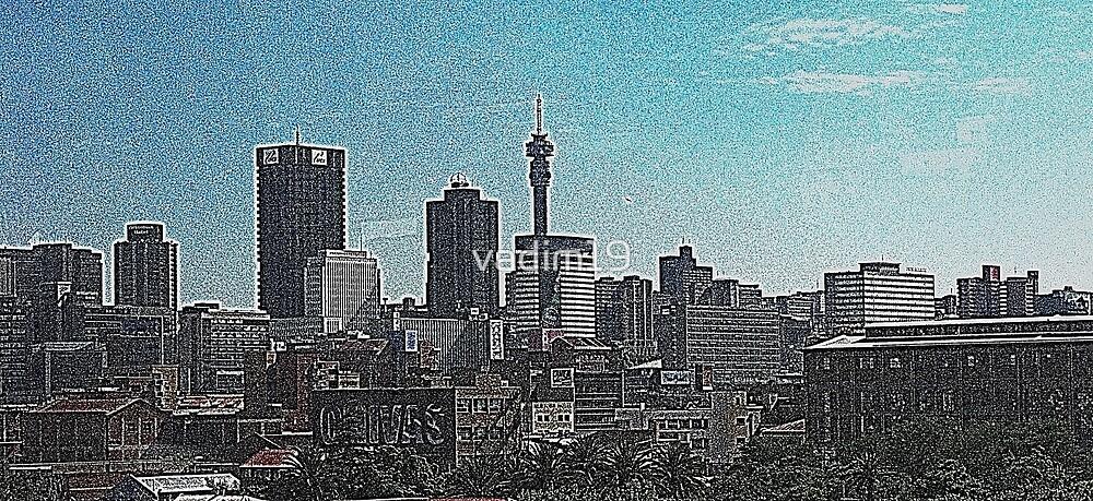 Johannesburg, South Africa by vadim19