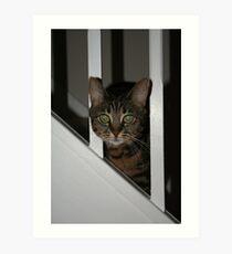 Stair Cat Art Print