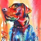 A Coat of Many Colours - Labrador dog by Peter Williams