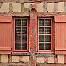 Beautiful Cottage Pink Window by MaluC