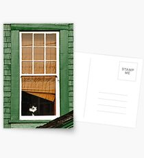 Cat in the window Postcards