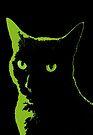 Black Cat 5 - Card by Etakeh