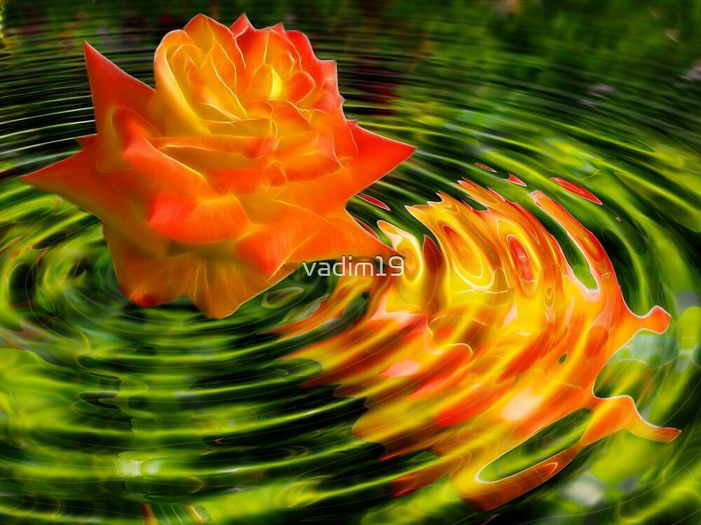 Reflection by vadim19