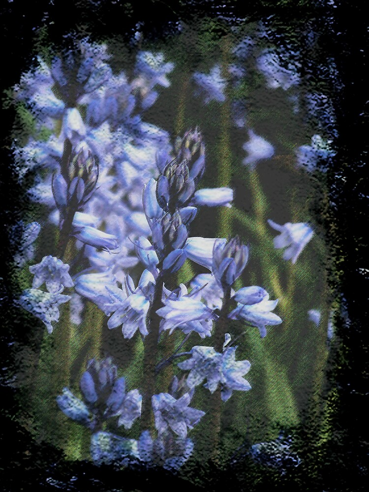 Being Blue by Judi Taylor