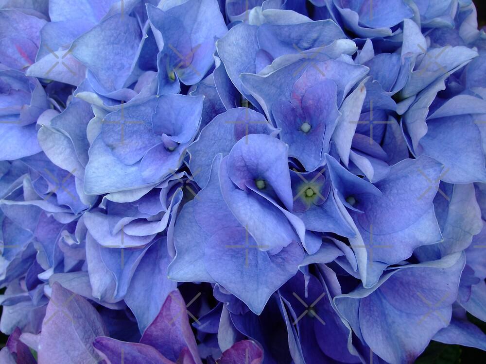 blue swirls by poupoune
