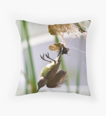 Little Spiderhunter 2 Throw Pillow