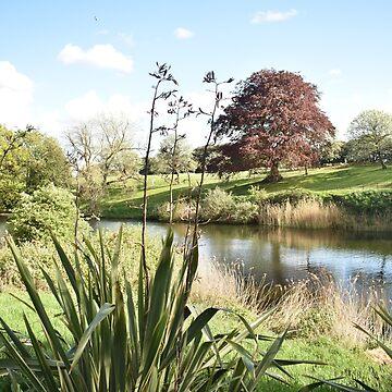 Phoenix Park pond, Dublin, Ireland by alisonchambers