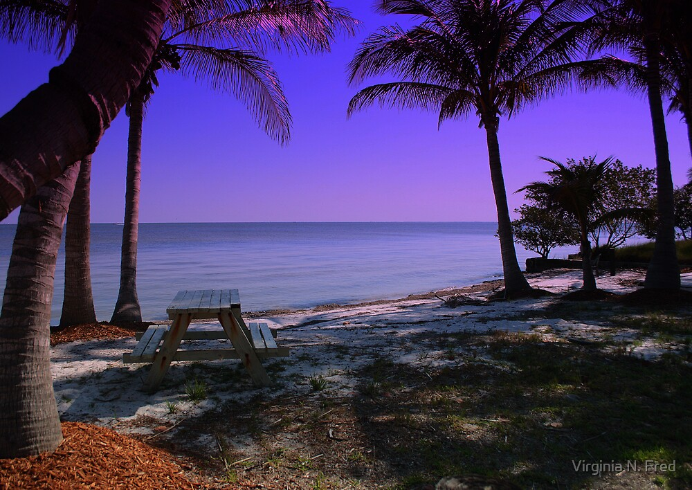 Welcome To SWFL by Virginia N. Fred