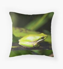 Green Reed Frog Throw Pillow