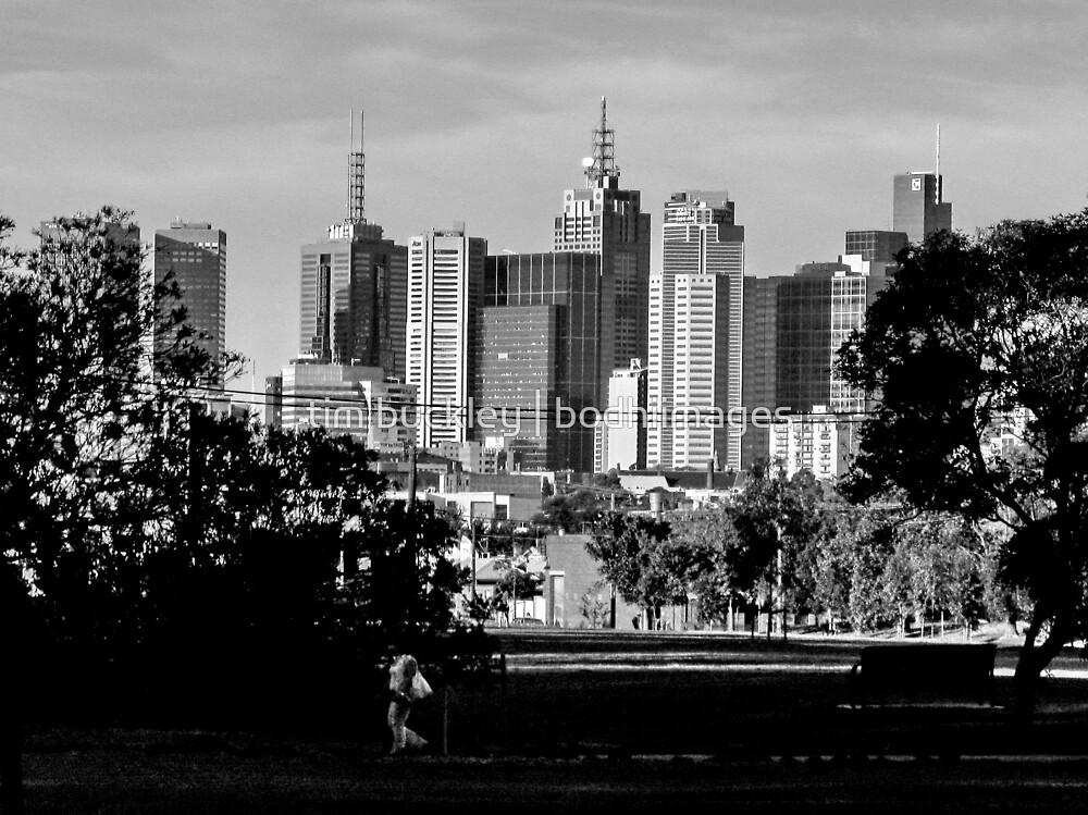 winter skyline. melbourne, australia by tim buckley | bodhiimages