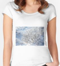 Hoarfrost on Arctic Willow Women's Fitted Scoop T-Shirt