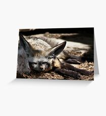 40 Winks Greeting Card