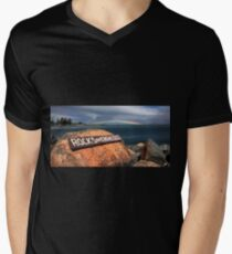 Rainbow Forster 047 Men's V-Neck T-Shirt