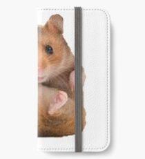 hamster  iPhone Wallet/Case/Skin